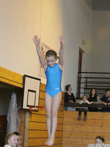 acrobates_2012_016