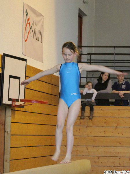 acrobates_2012_019