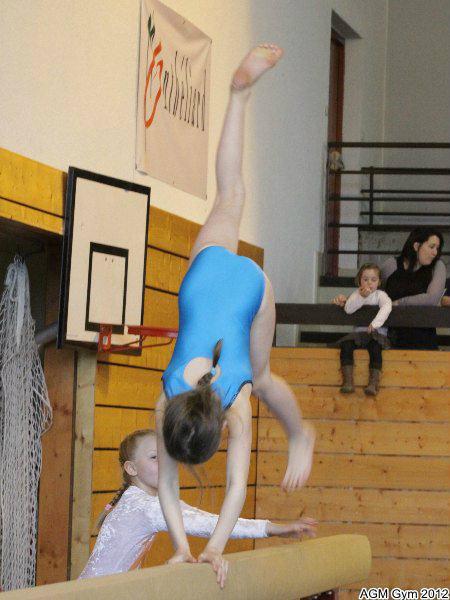 acrobates_2012_022