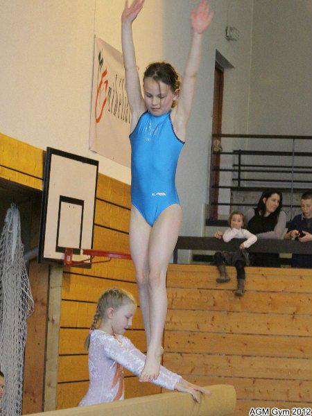 acrobates_2012_023