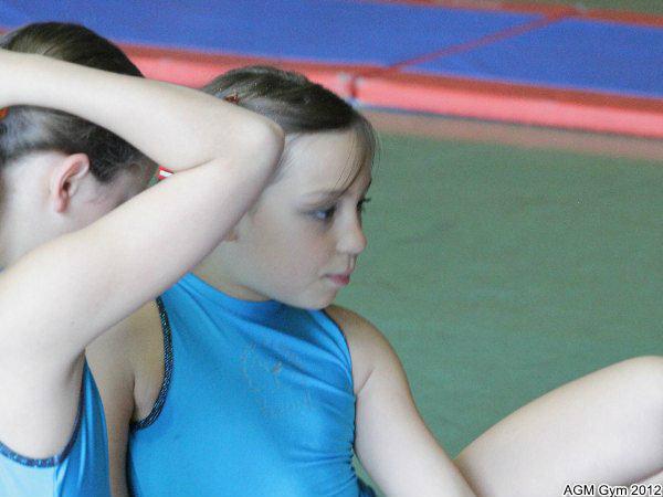 acrobates_2012_026
