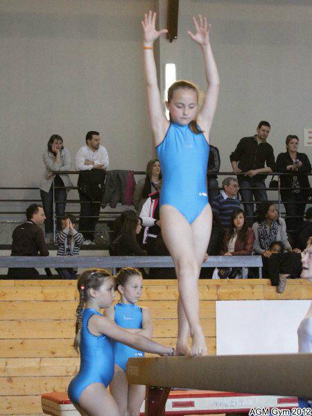acrobates_2012_031
