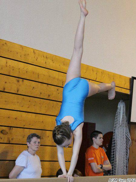 acrobates_2012_045