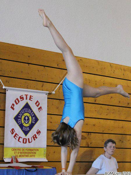 acrobates_2012_051
