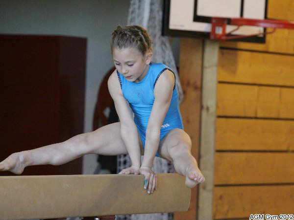 acrobates_2012_053