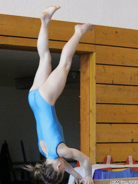 acrobates_2012_059