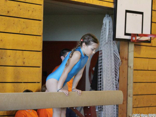 acrobates_2012_060