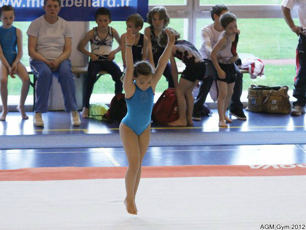 acrobates_2012_068