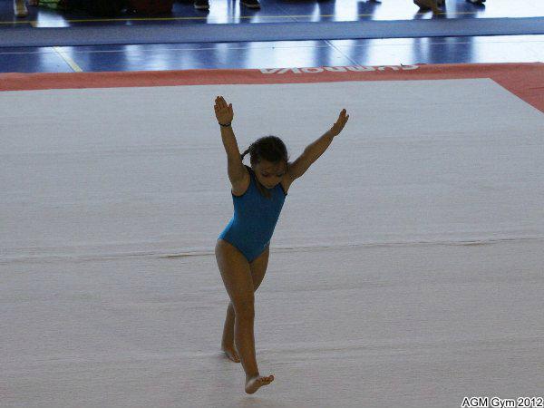 acrobates_2012_069