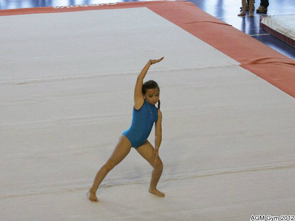 acrobates_2012_070
