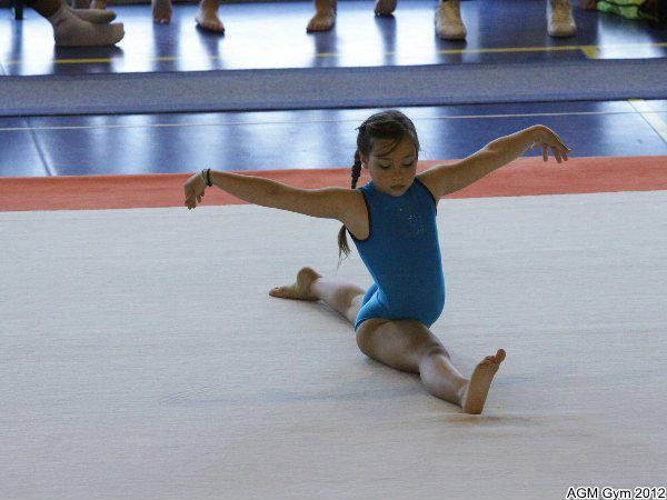 acrobates_2012_072