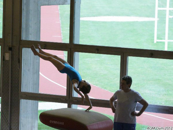 acrobates_2012_074