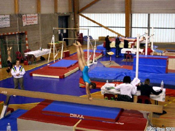 acrobates_AGM_012