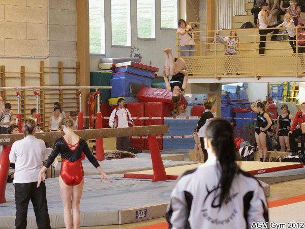 AGM Gym 2012016