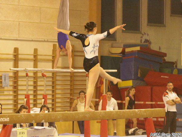 AGM Gym 2012039