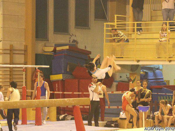 AGM Gym 2012042
