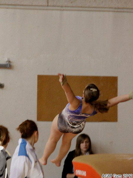 AGM Gym 2012067