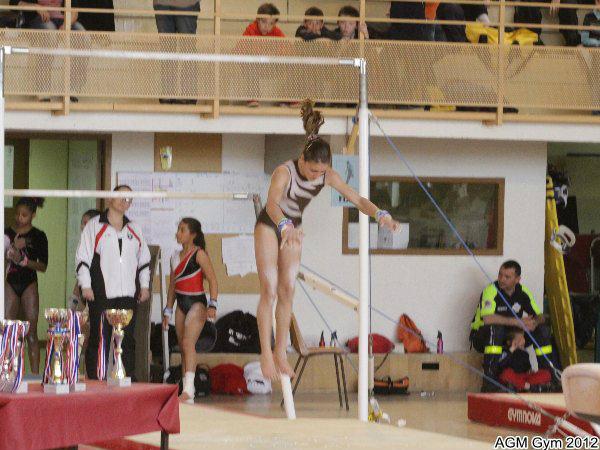 AGM Gym 2012087