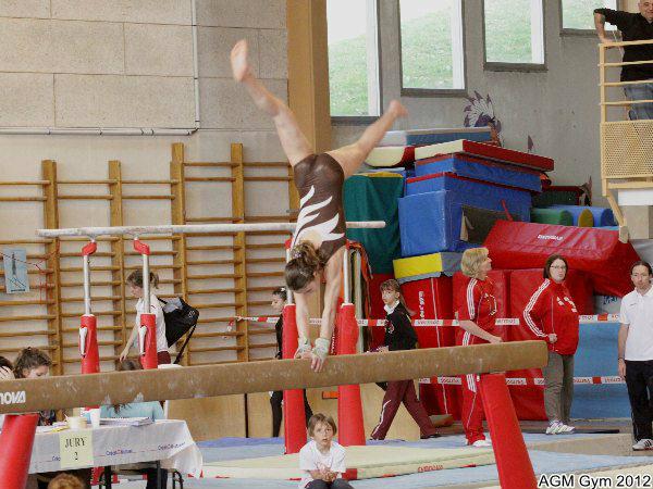 AGM Gym 2012093