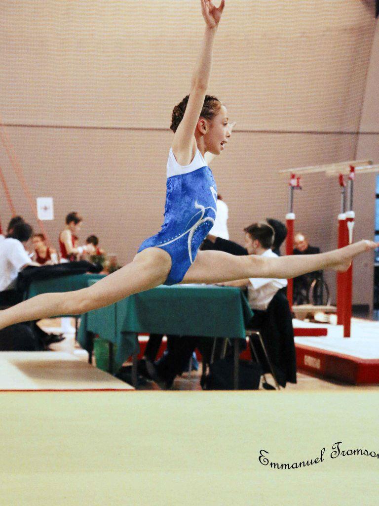 Championnat gym le 16 janvier 2016   (123)
