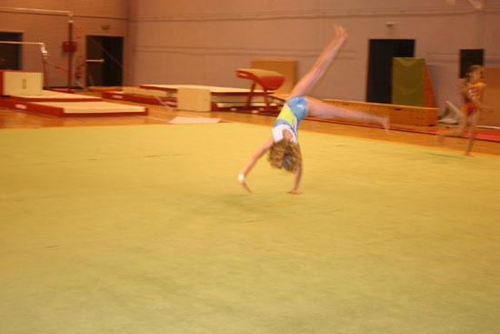 Fete de la Gym 2009 138